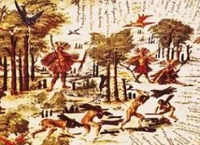 Exploração do Pau-Brasil no século XVI